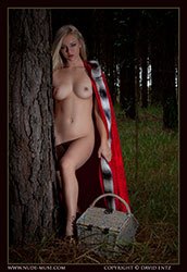 Naked lil red riding hood remarkable, this
