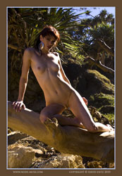 layla nude on log